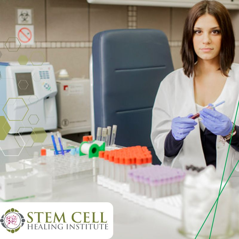 collection of stem cells - stem cell healing institute