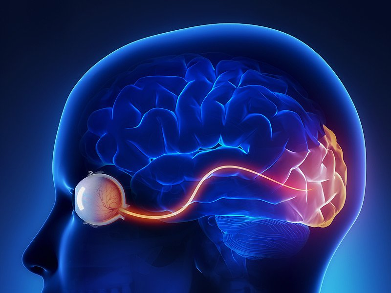 optic nerve injuries - stem cell healing institute